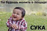 Фотография Dodoshka