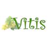 Виноград - последнее сообщение от Vitis